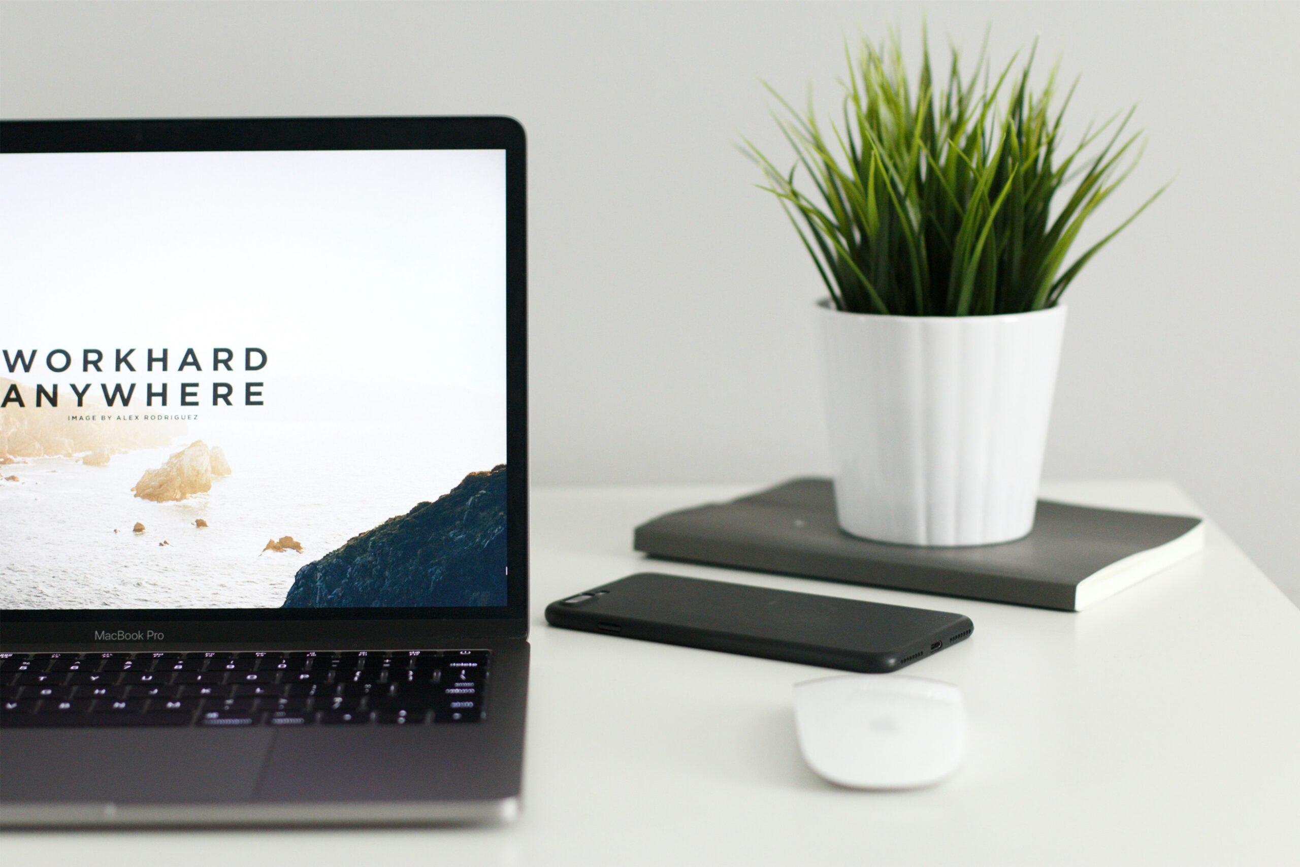 Wat heb je nodig voor WordPress?